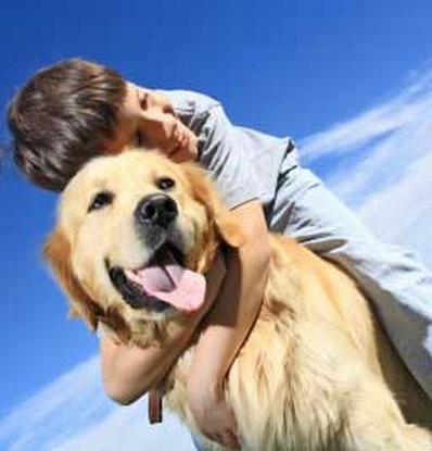 AnimalVet – un nou magazin online cu produse veterinare