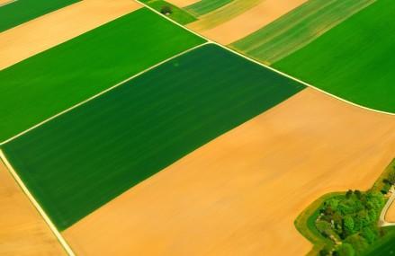 Agricover Credit IFN a acordat credite in valoare de 950 milioane Lei, in crestere cu 14% fata de anul 2014