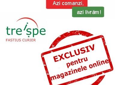 Livrare in aceeasi zi, prin Treispe – serviciul dedicat magazinelor online