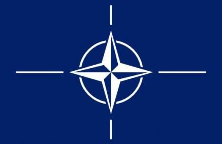 Militari din ţări membre NATO şi asociate au participat la un exerciţiu organizat în România