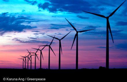 Google anunta ca trece pe energie verde din 2017