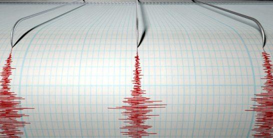Cutremur cu magnitudinea 4,2 grade pe scara Richter, în judeţul Vrancea