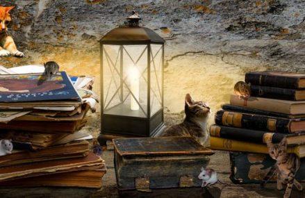 Despre cărți noi și cărți vechi