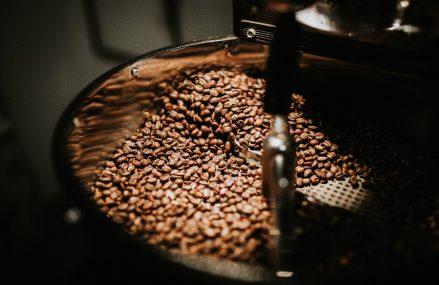 Care sunt cele mai importante soiuri de cafea din lume?