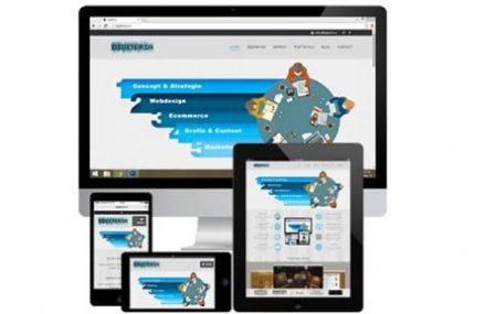 Dezvoltarea unui business in mediul online