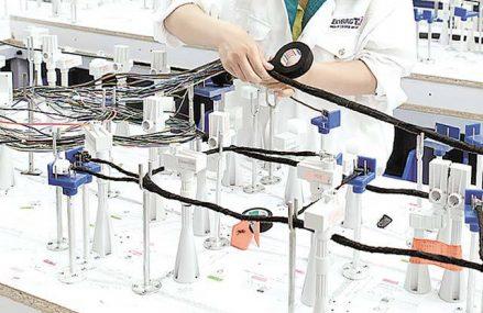 Producătorul de cabluri pentru industria auto Leoni caută 217 oameni pentru fabrica din Bistriţa. Cu aproximativ 13.000 de angajaţi la nivel local, Leoni este unul dintre cei mai mari angajatori din România