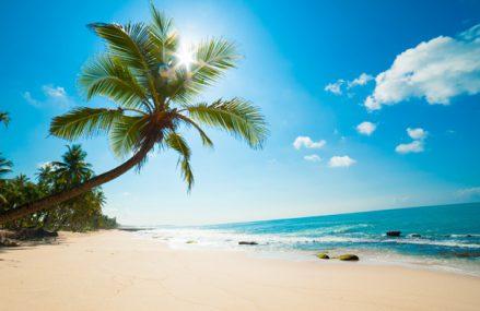 Hello Holidays, grup din turism: Oamenii sunt optimişti şi vor să călătorească. Anul a debutat cu rezervări pentru destinaţiile de vară şi toamnă