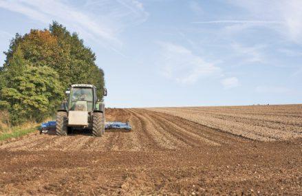 Una din zece firme înfiinţate în acest an în România este în agricultură: Agricultura este al doilea cel mai râvnit sector după comerţ, dar în faţa construcţiilor şi transporturilor