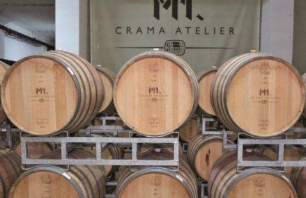 Mărirea şi decăderea celui mai mare producător de vin. Businessul Murfatlar este vândut pe bucăţi de lichidatorul judiciar. Crama costă 10 mil. euro, iar cele 370 ha de vie pornesc de la 3 mil. euro