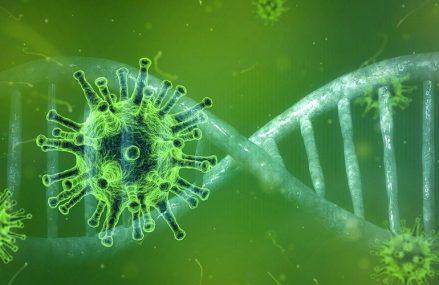 1.339 de cazuri noi de infectare cu coronavirus