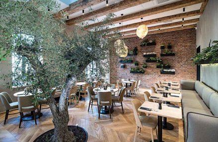 Au pornit de la o ceainărie în Cluj iar acum au cel mai mare restaurant vegetarian, vegan şi raw vegan din România. Care este povestea Samsara Foodhouse, concept care va ajunge şi în Bucureşti?