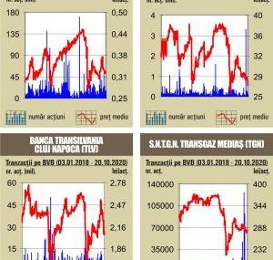 BVB Indicii, in scadere, pe fondul unui rulaj sub media anului
