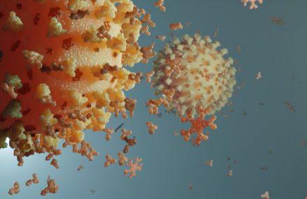 Cât timp durează imunitatea după COVID-19? Studii efectuate şi clarificări OMS