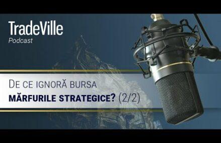 (2/2) De ce ignora bursa marfurile strategice?