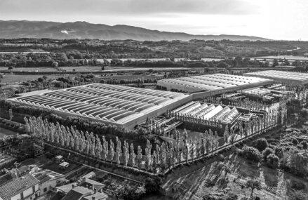 Prada, unul dintre cei mai importanţi jucători din industria luxului, investeşte 19 mil. euro într-o fabrică în România. Gigantul fondat acum mai bine de un secol de familia cu acelaşi nume are deja o fabrică în România, la Sibiu, unde realizează produse din piele