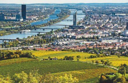 Viena, centrul financiar de pe Dunăre al Estului